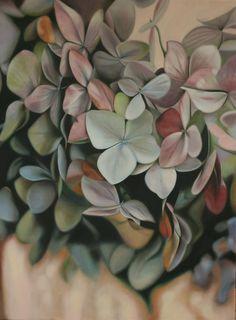 i love hydrangea's