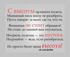 цитаты, высказывания, афоризмы, умные мысли, мотивация