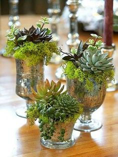 A great example of mixed mercury glass vases with succulents inside. The metallic feature of the vases looks wonderful against the green plants - a lovely way to use plants as home decor.