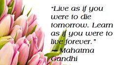 I AM Sharon M Kerr Encouraging Inspiring Motivating Lives Forever Mahatma Gandhi, Daily Quotes, Motivation, Learning, Flowers, Plants, Life, Inspiration, Daily Qoutes