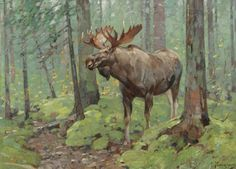 art-and-things-of-beauty:Carl Clemens Moritz Rungius (1869-1959) - Moose, oil on canvas, 61 x 81,3 cm.