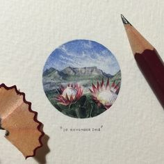 Day 324 : King Proteas + Table Mountain. 28 x 28 mm....