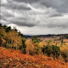 Devil's Punch Bowl in Hindhead, Surrey http://www.nationaltrust.org.uk/hindhead-and-devils-punchbowl/