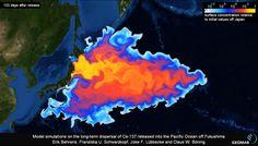 Insetos continuam sofrendo com a radiação do desastre de Fukushima