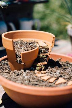 DIY Fairy Garden from Broken Pots #gardeningcontainer #containergardening