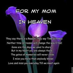 For my mum, still miss her every day after 12 years