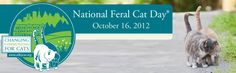 OCT 16 ~NATIONAL FERAL CAT DAY- Alley Cat Allies created National Feral Cat Day® to promote humane care for feral cats. Our efforts to share info & educate on the importance of Trap-Neuter-Return have been supported by caring individuals & groups! Last year advocates hosted events nationally & around the world. We want to top that in 2012—join us! Whether you're holding a one-time event or working toward sustainable change for cats, we welcome your efforts! HELPING CATS STARTS WITH YOU!