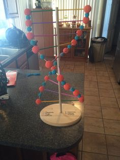 DNA model project with styrofoam