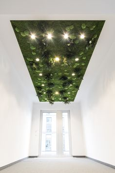 Ceiling garden- seems almost like an optical illusion- like the world's been turned upside down. I love it.