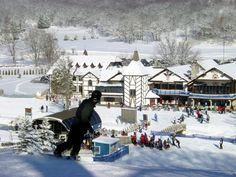 Alpine Valley Resort. With 20 runs, nine chair lifts, four surface lifts, ski/snowboard instructions and four restaurants you'll be sure to enjoy your snow sports experience. http://www.alpinevalleyresort.com/