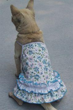 Gorgeous Suspender Mini Dog Dress