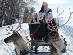 Santa sleigh rides for hire with real reindeer! Now you can hire Santa and his reindeer for sleigh rides in the Minneapolis, Mn. Surprise your guests a. Merry Christmas To All, Noel Christmas, Father Christmas, Christmas Music, Winter Christmas, Christmas Ideas, Christmas Scenes, Swedish Christmas, Scandinavian Christmas