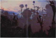 Peter Fischli and David Weiss, Musée d'Art Moderne de la Ville de Paris, Verlag der Buchhandlung Walther Koenig, 1999