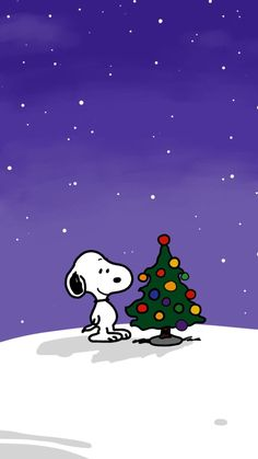 Snoopy Pictures, Snoopy Christmas, Peanuts Gang, Drawings, Illustration, Wallpapers, Fictional Characters, People, Beautiful