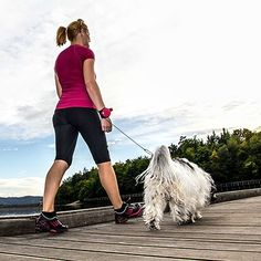 For all the runners and power walkers who'd love some company, the Lishinu dog leash let's your furry partner run along side you without getting tangled.