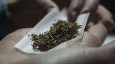 Il giro d'affari delle startup della cannabis http://www.sapereweb.it/il-giro-daffari-delle-startup-della-cannabis/ Marijuana cannabis (Fotografia: Irene Rodriguez/EyeEm/Getty Images) Legalizzata in California contemporananeamente alla vittoria di Trump,sugli scaffali delle farmacie italiane da questo mese: a fini terapeutici o ricreativi che sia, la cannabis sta generando un business (legale) ...