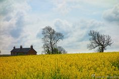 England's Green and Pleasant Land - 7 by Steve Hey on 500px