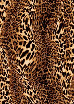 Estampa Leopardo - Inverno 14