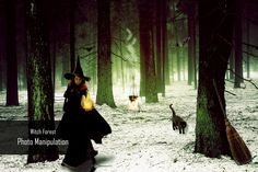 #Photoshop #Tutorial - #PhotoManipulation - #Witch #Forest