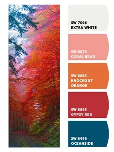 Instantly turn any picture into a palette with ColorSnap, created for you by Sherwin-Williams. Red Colour Palette, Color Palate, Color Pop, Colour Combinations, Color Schemes, Coral Paint Colors, Bedroom 2018, Favorite Paint Colors, Sherwin William Paint