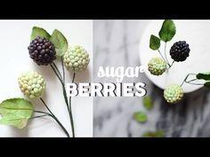 Brombeeren aus Blütenpaste, Blätter, Blüten / Gumpaste Blackberries Tutorial (English subtitles!) - YouTube
