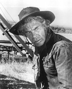 Lee Marvin, Cat Ballou Movies Photo - 28 x 36 cm Old Western Movies, Western Film, Westerns, Cat Ballou, Lee Marvin, Oscar Winning Films, Movie Wallpapers, Animals Of The World, Best Actor
