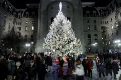 The City Hall Christmas Tree-Lighting Ceremony is Tonight - Wooder Ice