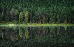 Tula Top: через красоту природы о вечном — Российское фото