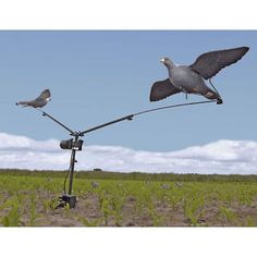 Pigeon #magnet decoy machine rotary #hunting shooting bird trap clay high #qualit,  View more on the LINK: http://www.zeppy.io/product/gb/2/231870490007/
