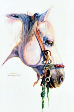 """""""Red, Grey & Green,"""" a pencil work by K.W. Whitley, is among the works spotlighted in """"America's Horse in Art,"""" an exhibition and sale opening Saturday at American Quarter Horse Hall of Fame & Museum."""
