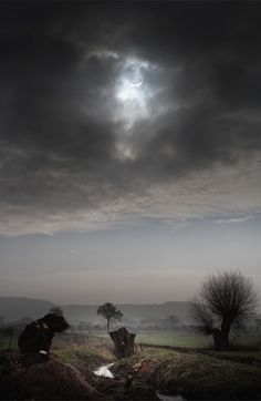 My first Solar Eclipse. The cloud certainly made it more dramatic. Gloucestershire, UK