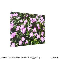 Pink Periwinkle Flowers Print Huge Wrapped Canvas