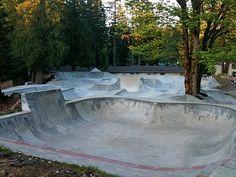 skate barn nc cement - Google Search