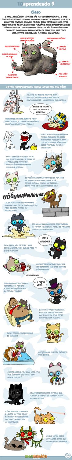 10aprendendo com o Coala #9 - Gatos                                                                                                                                                     Mais