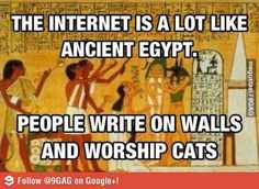 Egyptians, we are doing it right. That grumpy cat meme walks a fine line between funny and freaking annoying