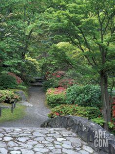 japanese garden stone bridge in washington park arboretum seattle washington usa