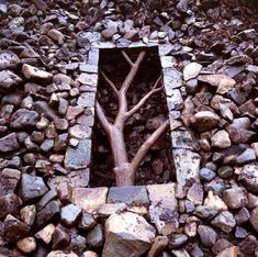 Andrew Goldsworthy, one of my favorite artists