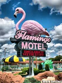 Flamingo Motel, Wisconsin Dells Wisconsin With a sign like that.I may actually go to Wisconsin Dells simply to stay at this Motel.