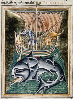 The Aspidochelone. Ashmole Folio Latin name: The Aspidochelone. A magnificent many-finned whale catches fish, while misguided sailors, thinking it to be an island, try to land on its back. —The Medieval Bestiary Medieval Life, Medieval Art, Medieval Manuscript, Illuminated Manuscript, Isidore Of Seville, Jonah And The Whale, Medieval Paintings, Arte Tribal, Whales