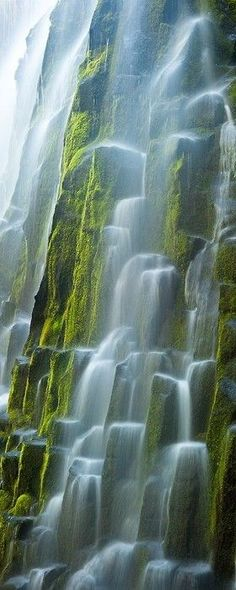 Glacial meltwater flows over the moss covered basaltic columns of Oregon's Proxy Falls. Location -  Lane County, Oregon