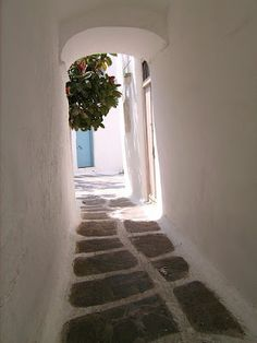 Someday I will make it to Mykonos Mykonos Town, Mykonos Greece, Places To Travel, Places To Visit, Greece Pictures, Places In Greece, Go Greek, Little Island, Mediterranean Style