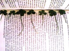 How to press a 4-leaf clover.