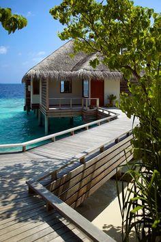 Dusit Thani Maldives 5