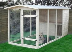 Dog House with screened in area