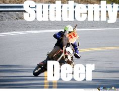 Having A Nice Ride On A Dirtbike When Suddenly! by - A Member of the Internet's Largest Humor Community Country Girl Life, Country Girls, Dirtbike Memes, Dirt Bike Quotes, Dirtbikes, Girls Life, Custom Trucks, Wtf Funny, Suddenly