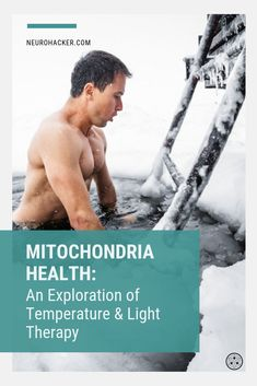 Any way we can boost mitochondria helps us to increase the longevity of our cells and support energy production. Here we explore temperature and light therapy to improve mitochondrial health and support healthy aging. Brain Connections, Cellular Energy, Healthy Aging, Light Therapy, Brain Health, Neuroscience, Physical Activities, Health Benefits, Health And Wellness