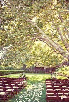 the more I think about it, the more I'm leaning towards an outdoor wedding someday!