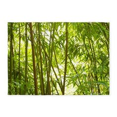 Bamboo Forest 5'x7'Area Rug