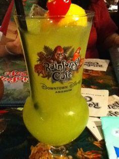Rainforest cafe Rainforest Cafe, Hurricane Glass, Copycat, Disneyland, Madness, Summertime, Auction, Clock, Pumpkin