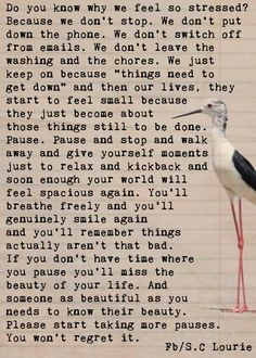 Do you know why we feel so stressed? Because we don't stop................................................................................................. Please start taking more pauses. You won't regret it.